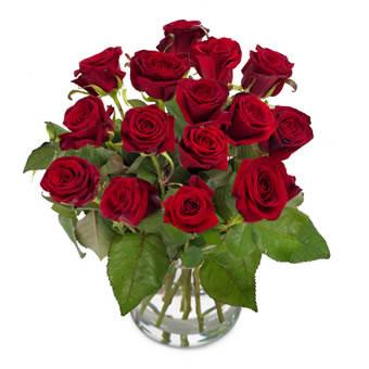 Rød rosebukett