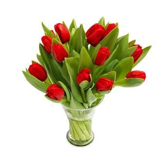 Jul - Røde tulipaner