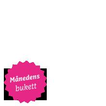 Marsbuketten_overlay