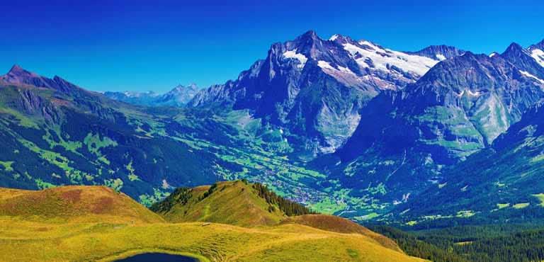 Send Flowers to Switzerland