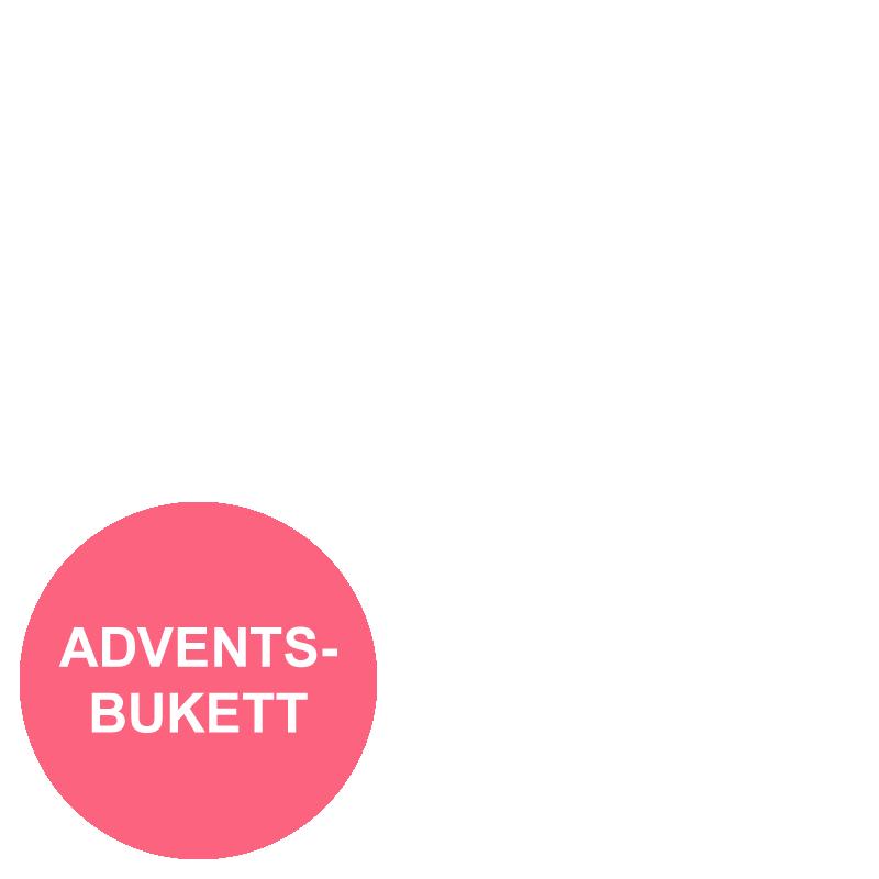 Fias adventsbukett_overlay