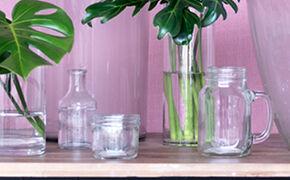 Sæt tulipaner i rene vaser