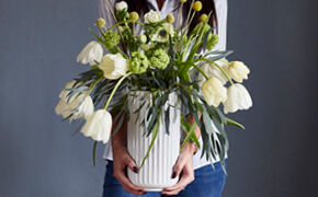 Vilde tulipaner